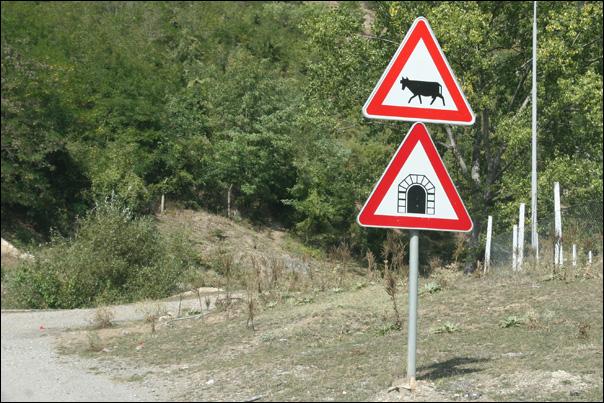 Des vaches, un tunnel, rien de spécial panneau