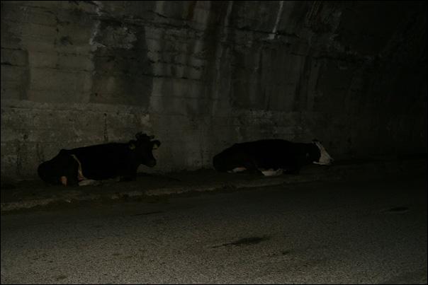 Mais une fois dans le tunnel non éclairé, qu'est-ce que cela